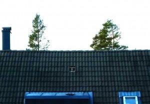 Stormen Ivar - Bortblåsta takpannor
