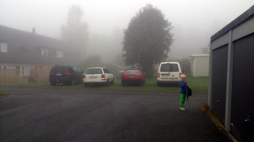 Parkering på gräsmatta bild 3